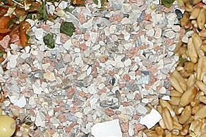 Vogelgrit, Mineralstoffe und Magensteinchen zur Verdauung.