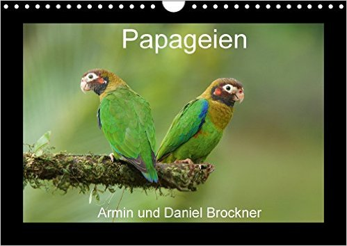 papageien-wandkalender-2017-din-a4-quer-die-schoensten-voegel-der-welt-monatskalender-14-seiten