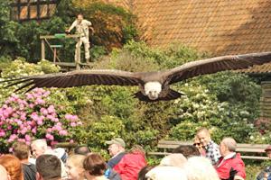 Besuch im Weltvogelpark Walsrode, anlässlich der AZ-IG Tagung am 20. Mai 2017