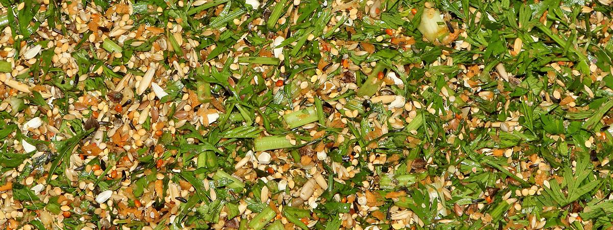 Klein gehackte Möhren mit Möhrengrün und kleinkörnige Samenmischung.